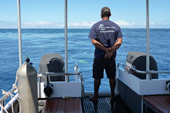 Tavenuni Ocean Sports' dive boat is fast, quiet and environmentally–friendly.