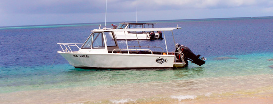 Our boats at Taveuni Ocean Sports