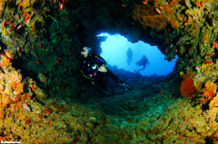 Come dive the most amazing places in Fiji with Taveuni Ocean Sports