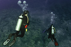 Taveuni Ocean Sports offers the safest PADI scuba diving courses in Fiji.